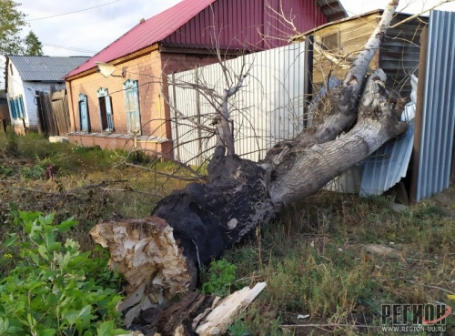 Вчерашний шторм показал, что в Троицке плохо прибито, что подгнило. Повалены крыши и заборы, сломаны столбы и деревья